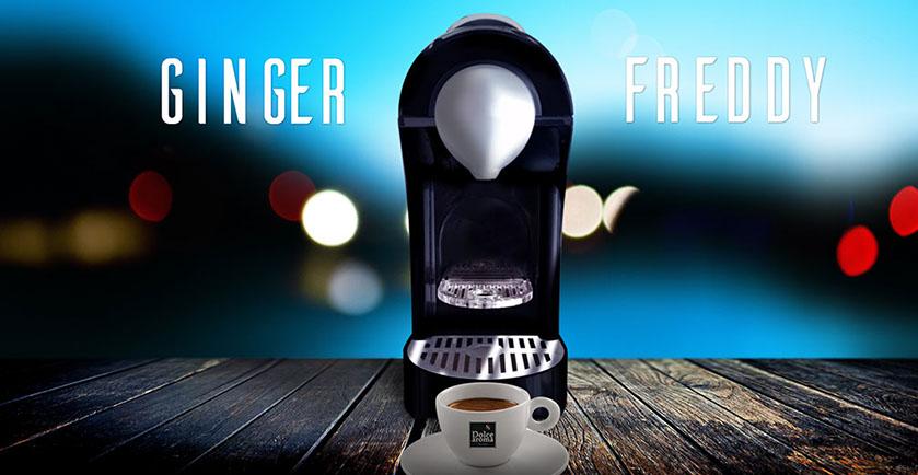 ginger freddy mokavi caffe